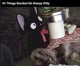 Guy Stacks 61 Things on His Sleeping Kitty