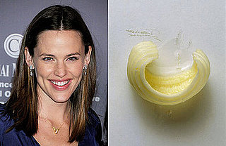 Jennifer Garner to Star in Butter-Carving Comedy