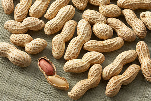 Are Inspectors to Blame For the Peanut Salmonella Outbreak?