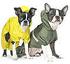 Bare Bones: Raincoat Roundup