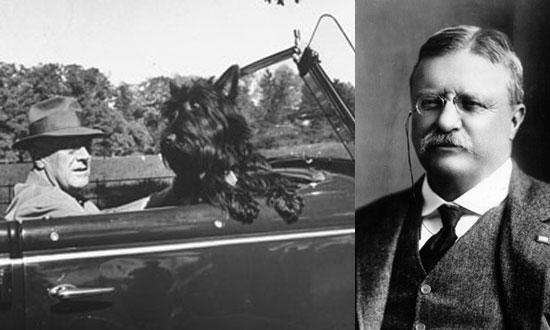 8. Roosevelt
