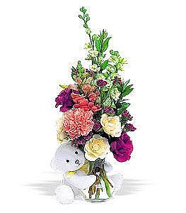 Bcherry Gift Shop | Send flowers to Vietnam. Cuddly Colors