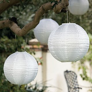 Do You Own Any Paper Lanterns?