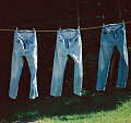 Do You Hang or Fold Your Jeans?