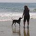 Arroyo Burro Dog Beach in Santa Barbara, CA