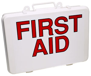 Do you travel with a first aid kit?