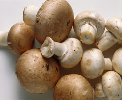 Foods to Stop Avoiding: Mushrooms