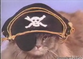 Is Your Cat A Pirate?
