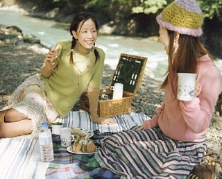 Plan the Perfect Picnic!