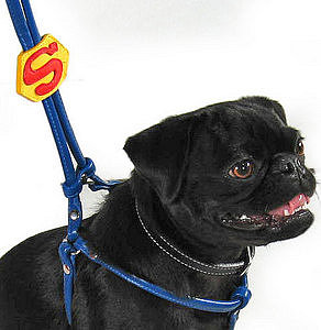 Superdog Leather Harness