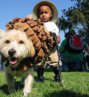 To the Rescue: How Do You Keep Pets Safe on Halloween?