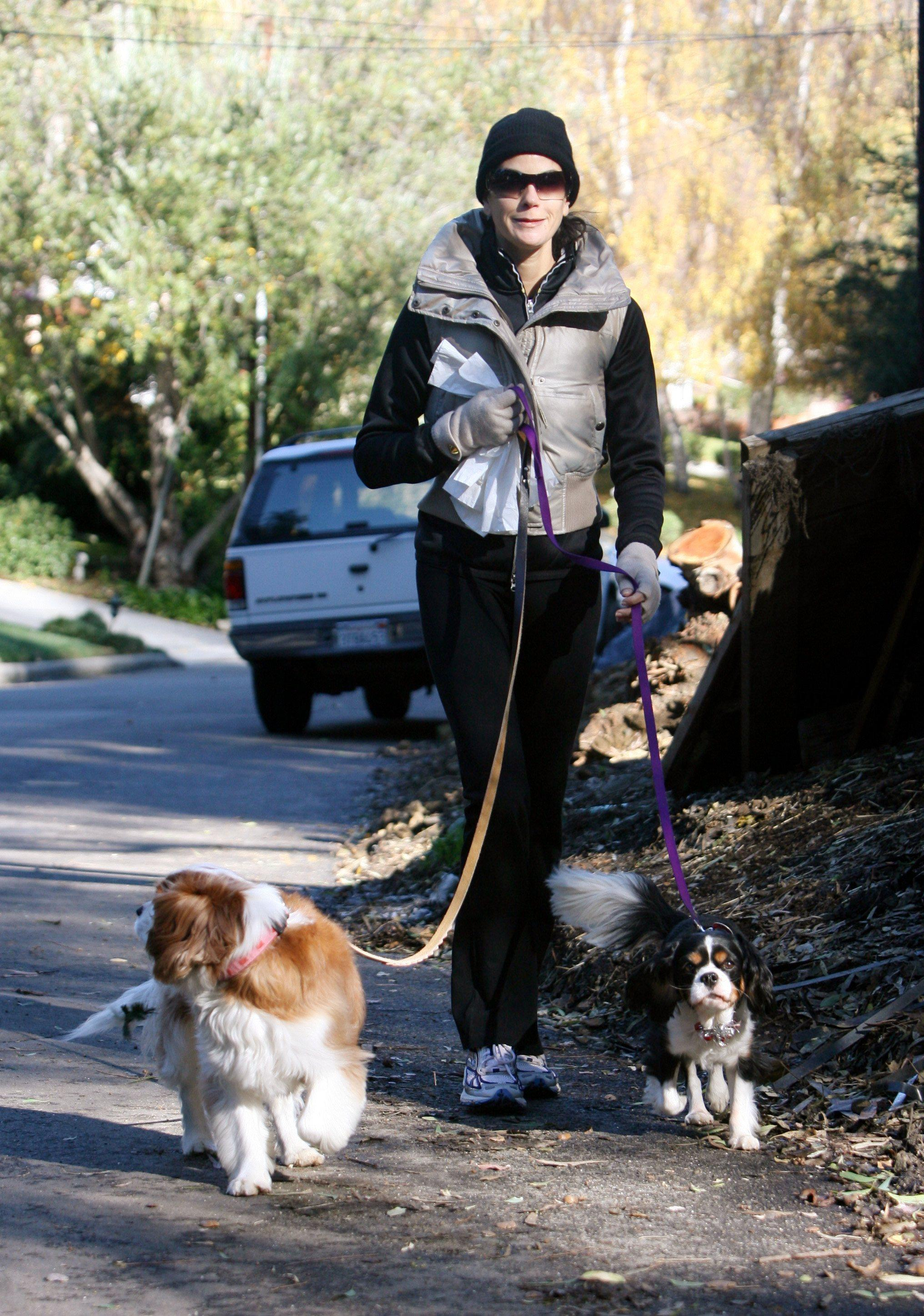 teri hatcher dog walk 091207