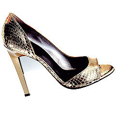 Metalic Snakeskin Shoe