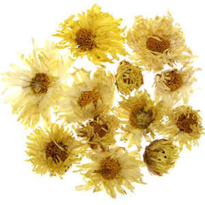 Chrysanthemum Tea