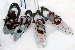If You Can Walk, You Can Snowshoe