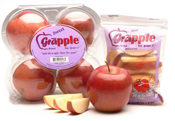 "Grapple: Say ""Grape-L"""