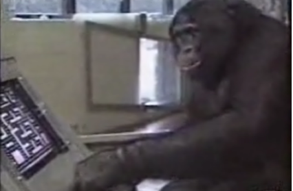 This Chimp Kicks Pac-Man's Ass