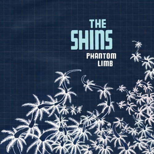 "Music Video: The Shins, ""Phantom Limb"""